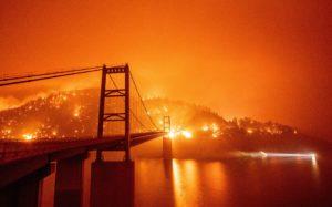 bosbranden
